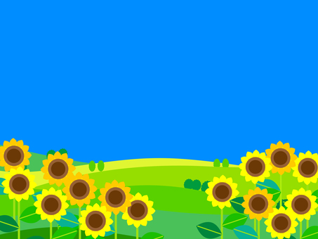 向日葵和藍天的框架