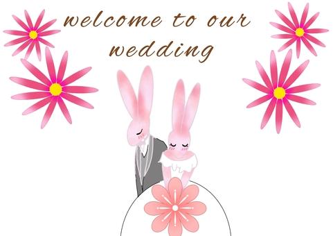 兔子的婚禮