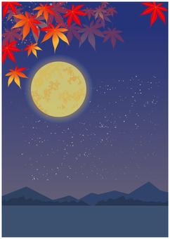 가을 붉은 단풍 밤하늘 배경