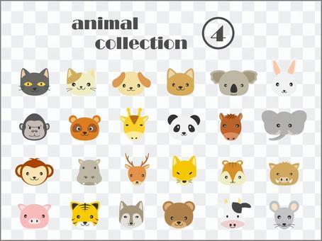 動物套裝4