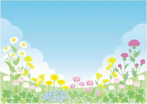 春天01的领域