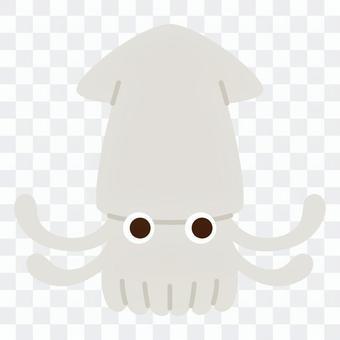 Sea creatures - squid
