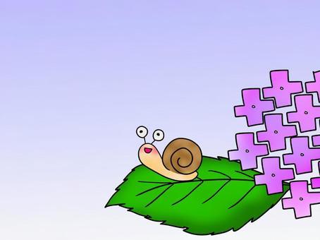 我背上的蝸牛3背景的繡球花
