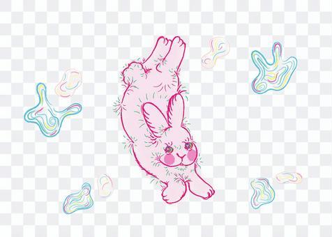 兔子在夢中徘徊6