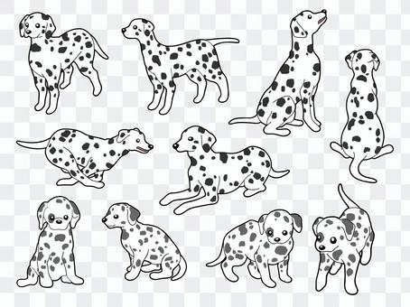 10 kinds of Dalmatian