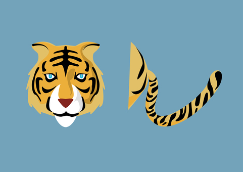 Tiger front face and tail