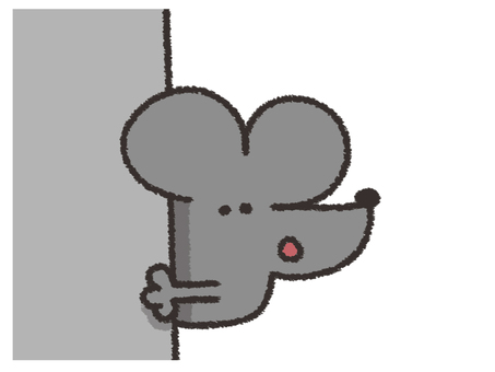 mouse or rat