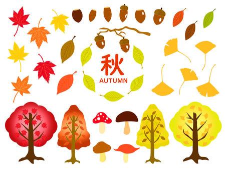 Autumn leaves / plant material set