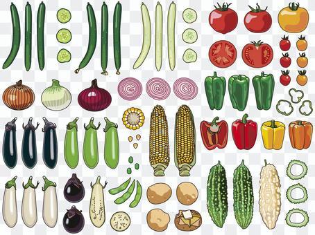 夏季蔬菜套裝01