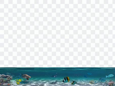 Sea underwater tropical fish banner decorative ruled line