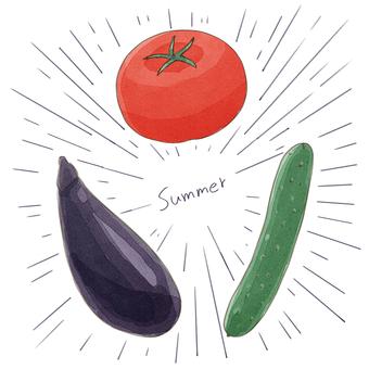 夏季蔬菜(png沒有字符或效果線)