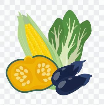 南瓜等蔬菜