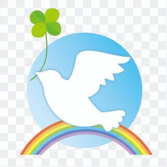 白色的鴿子和三葉草和彩虹