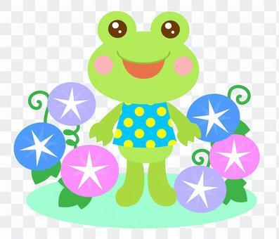 朝顔 夏 かえる 蛙 2