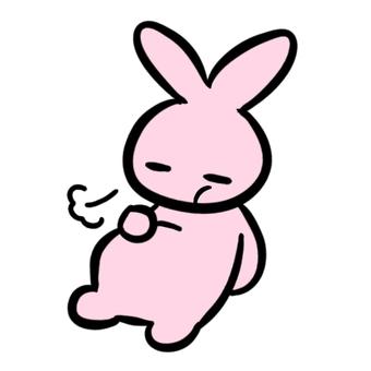 滿肚子的兔子