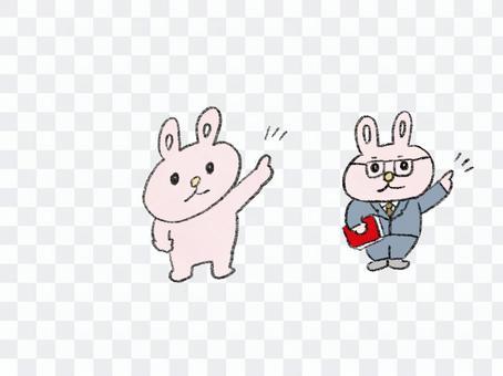 兔子注意老師老師要點