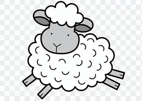 羊5-2c