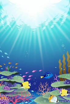 輝く青い珊瑚礁の風景