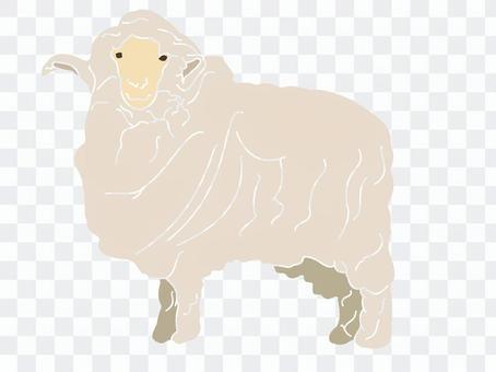 Impressive sheep