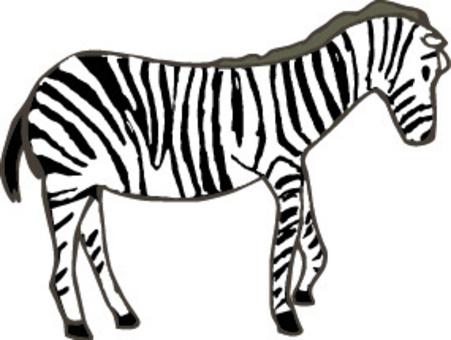 斑馬非洲動物園野生動物園