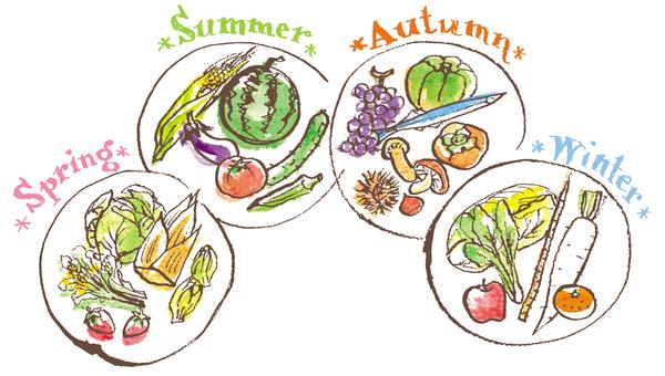 계절 야채와 과일 수채화 일러스트 춘하추동