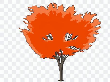 街路樹(紅葉①)