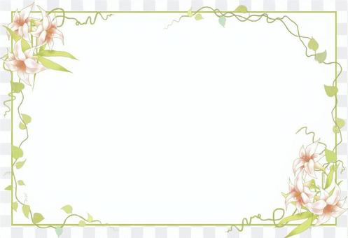 Lilies and vine frames