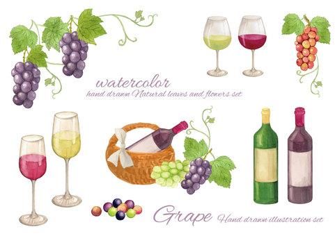 水彩葡萄和葡萄酒