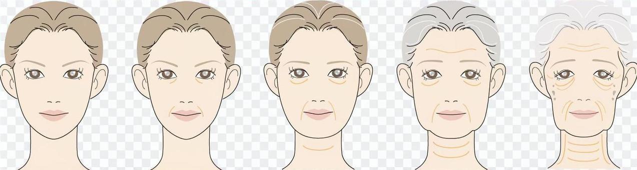 女性的臉_老化和老化