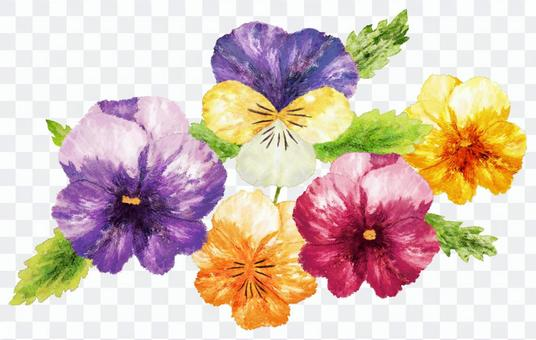 Pansy watercolor picture · Wallpaper