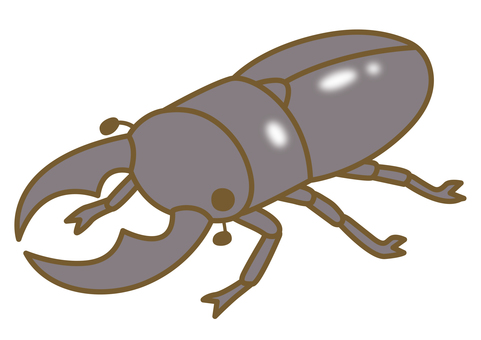 Illustration of cute stag beetle