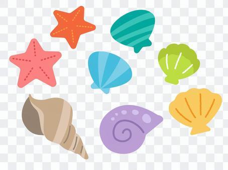 Shellfish & Starfish