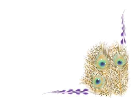 Peacock frame