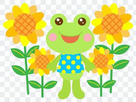 ひまわり 夏 かえる 蛙 2
