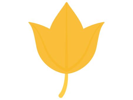 黃色 Acer buergerian 葉子