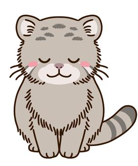 帕拉斯的貓