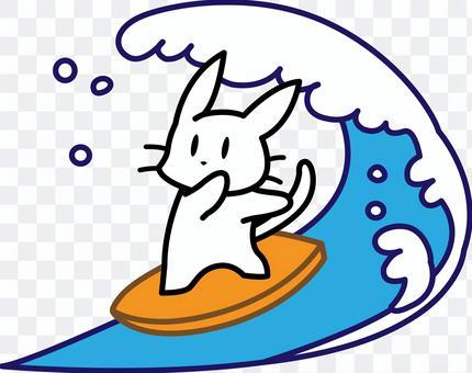 サーフィンをする 白ねこ