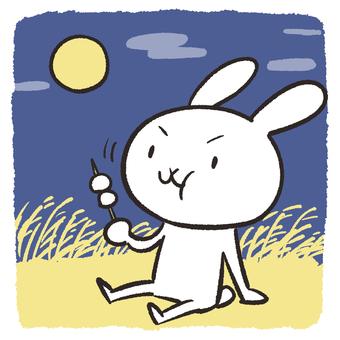 Rabbit watching the moon