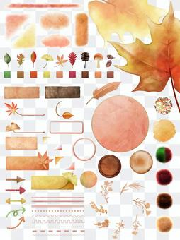 秋葉素材收集