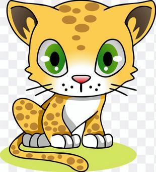 Leopard cheetah leopard