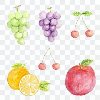 水彩のフルーツ詰め合わせ