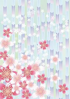 Sakura no Hana&Yabu 13