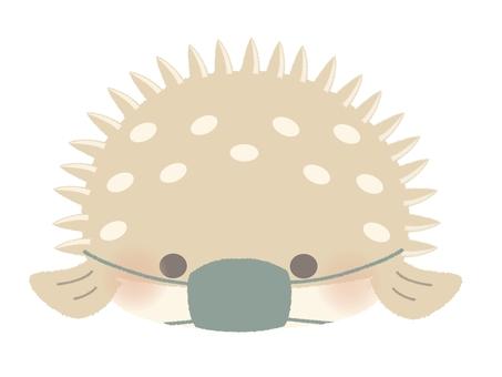 No illustration line of masked porcupinefish