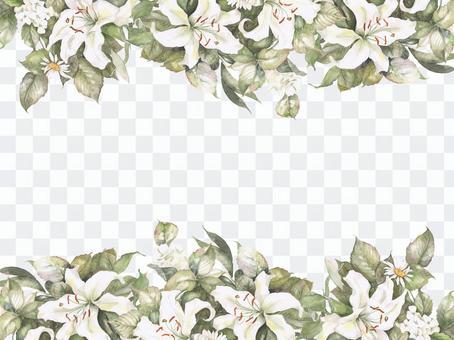 Flower frame 341 - Casablanca and white flower flower frame