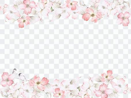 花框180  - 粉紅色的山茱萸和鱈魚子