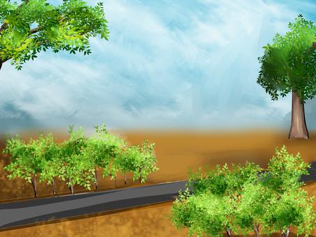Road bush background
