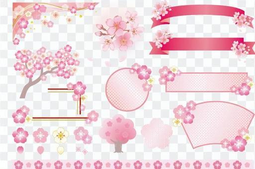 Sakura variety