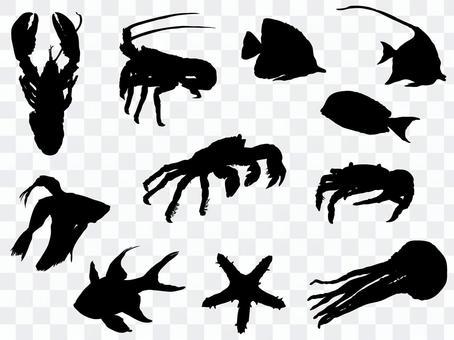 Marine creature silhouette_set 2