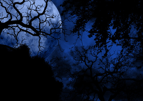 Full moon seen from the eerie blue forest