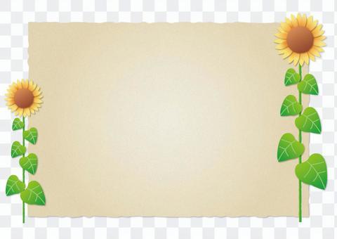 羊皮紙和向日葵